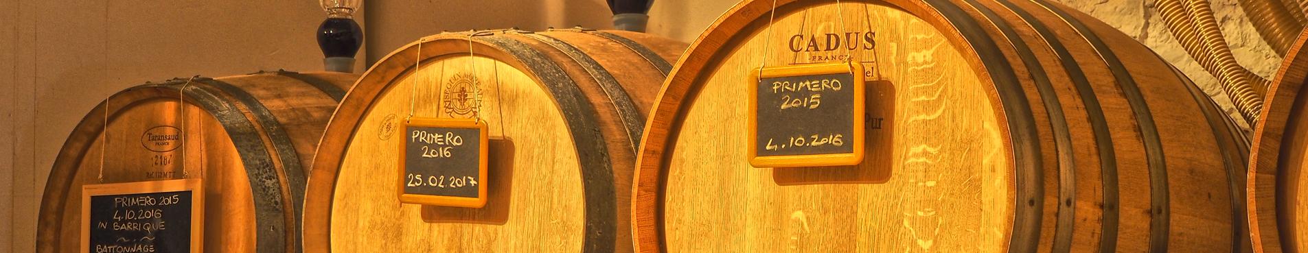 Produzione Vino Toscana
